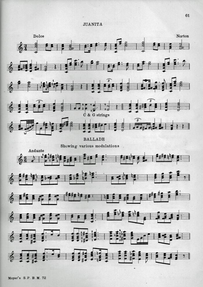 Tenor And Plectrum Banjo Rob Mackillop Musician